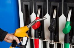 Владимир Путин поручил ФАС удержать цены на бензин