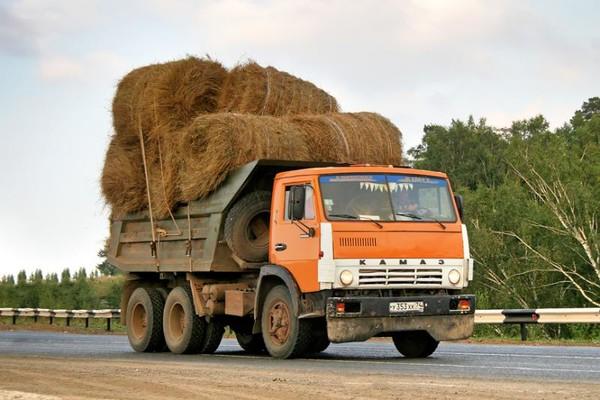 Плохие дороги в России — назван главный виновник