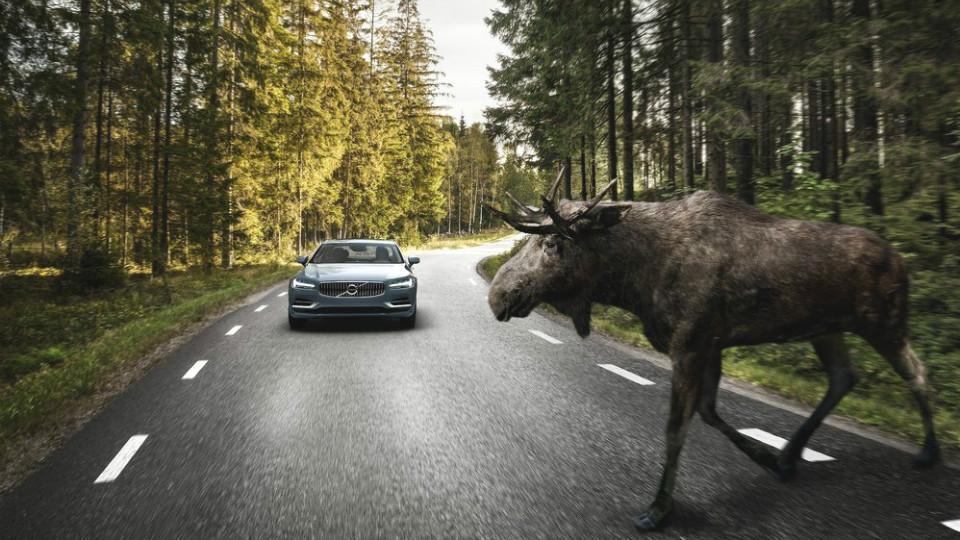 Система автоторможения станет обязательной для всех машин