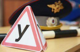 В России введут новый специальный знак