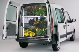 Транспортировка растений при переезде