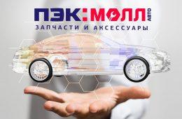 Деятельность компании ПЭК:МОЛЛ