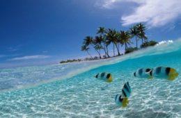 Памятка туристу. Бали
