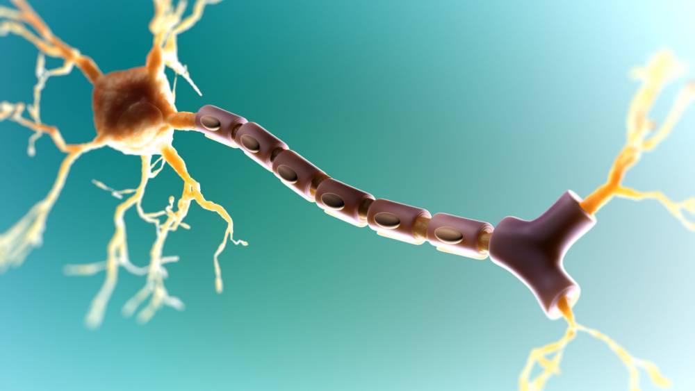 Ницетил таблетки – эффективная защита нервных клеток при воздействии неблагоприятных факторов