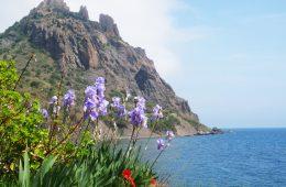 Отдых в Крыму весной: как отдохнуть и оздоровиться?