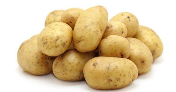 Боремся с болезнями и вредителями картофеля